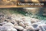 «Тель-Авив-Мёртвое море». Экскурсии.